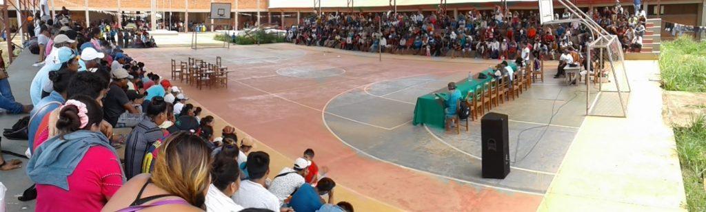 """Sena – Bolivia: """"Estamos quebrando pero nadie vende hasta no tener mejor precio de la castaña"""""""